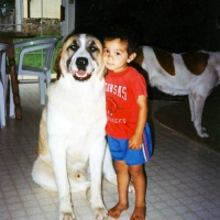 dog-boy5